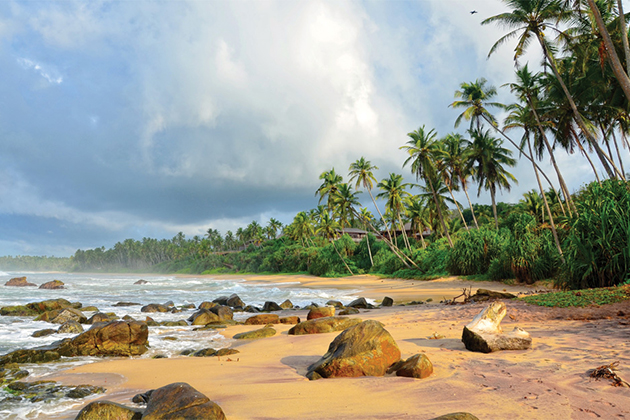 Best Time to Visit South Coast of Sri Lanka
