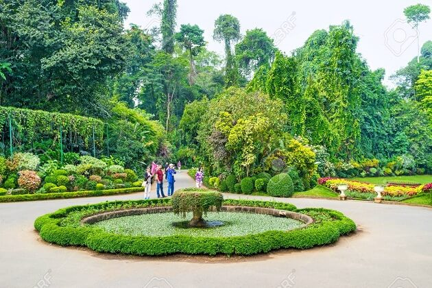 Botanical Garden places to visit in kandy