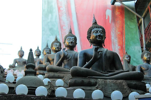 Explore sacred temples and kovils