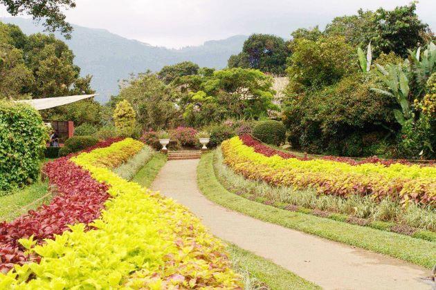 Hakgala Botanical Garden nuwara eliya attractions