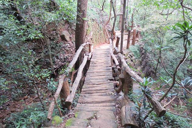 Illukkumbura Forest Conservation Centre