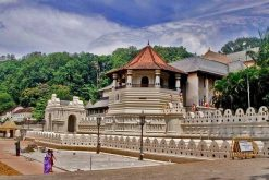 Marvelous Sri Lanka Sightseeing Tour – 7 Days