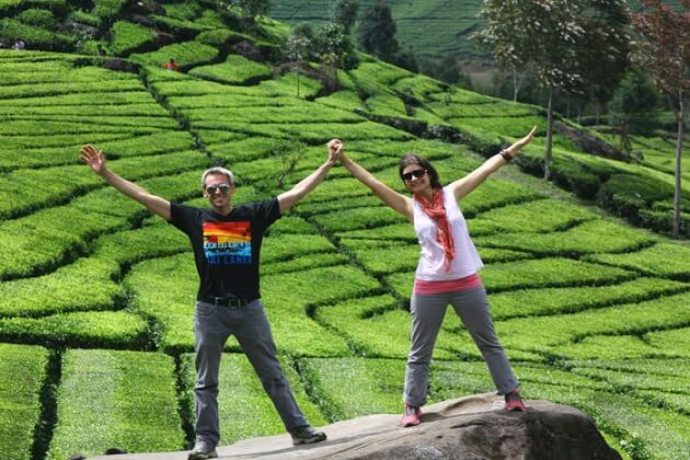 Nuwara Eliya - best sri lanka honeymoon tours