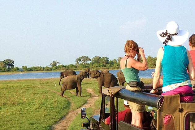 Udawalawa National Park - best sri lanka beach tours