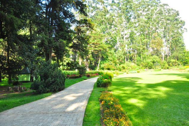 Victoria Park nuwara eliya things to do