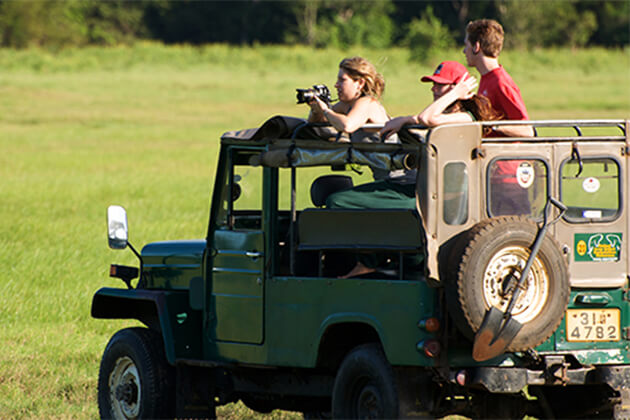 Yala National Park Safari Jeep Family Tour