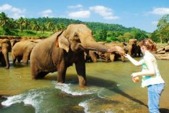 sri lanka 3 nights 4 days package