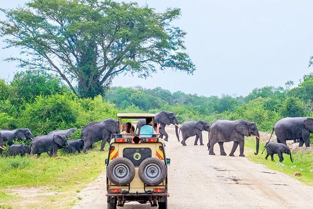 sri lanka family trip package